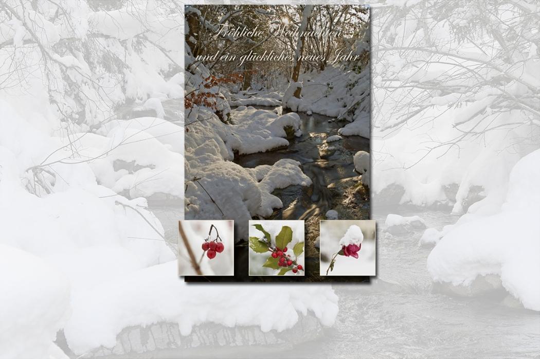 Weihnachtskarte-2016-webbild.jpg